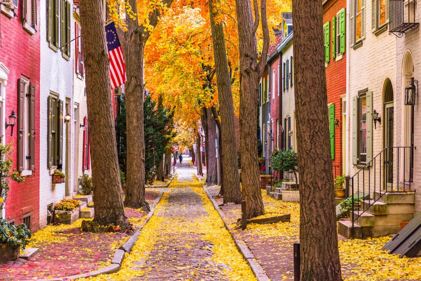 Fall Foliage Philadelphia