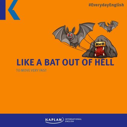 Halloween - Like a bat out of hell