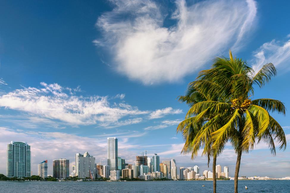Learn English and enjoy the beach and thriving atmosphere of Miami