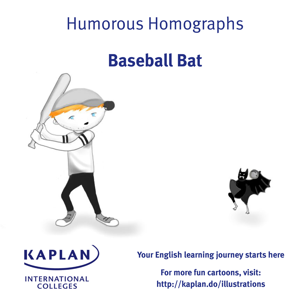 Baseball bat homograph