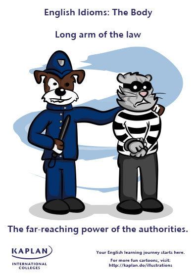 long arm of the law idioms