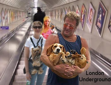 Dogs on the underground is one of the amusing topics on this podcast*