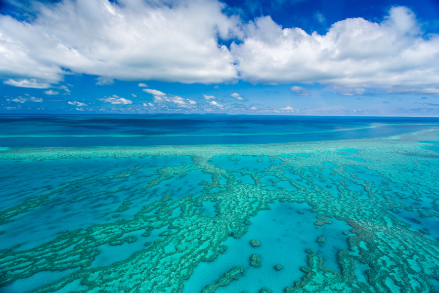 great barrier reef nature