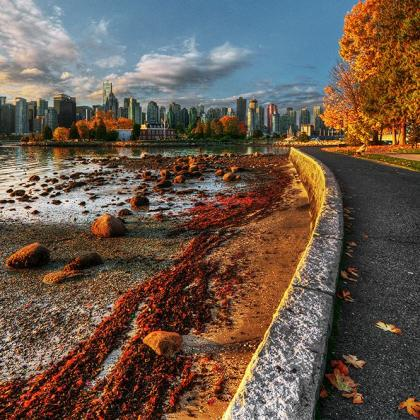 Stanley Park Vancouver - Herbst