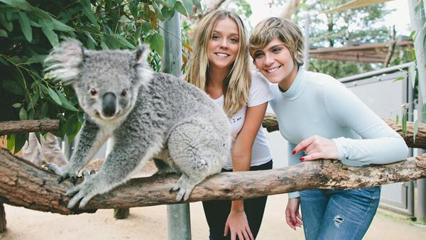 Gabi Lopes and Isabella Santomi and an unnamed koala