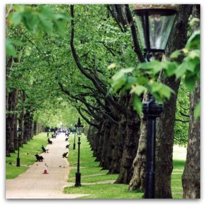 Auslandsstudium England - Parks London