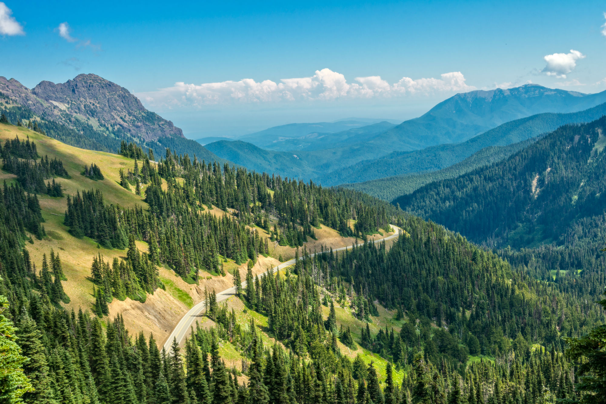 The Olympic National Park