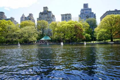 A view of the Lake in Central Park